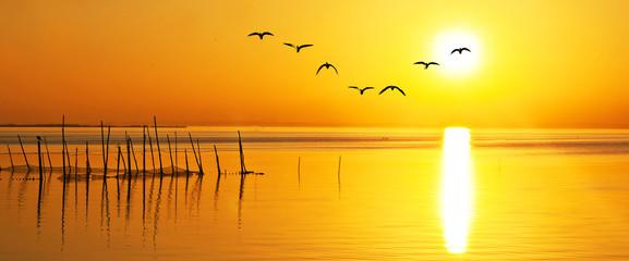 panoramica de una puesta de sol sobre el oceano dorado