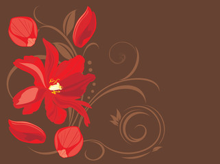 Red flower and petals on the decorative brown background