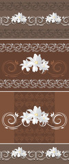 Ornamental brown borders with white tulips