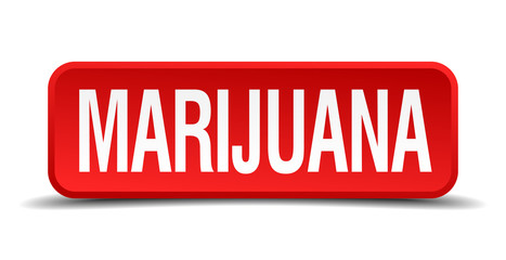 Marijuana red 3d square button isolated on white