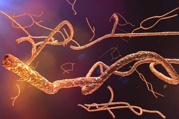 Microscopic Ebola Virus 3D render