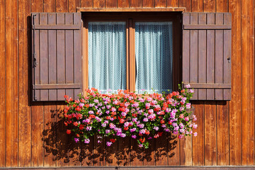 Window with flowers in hanging flower tray