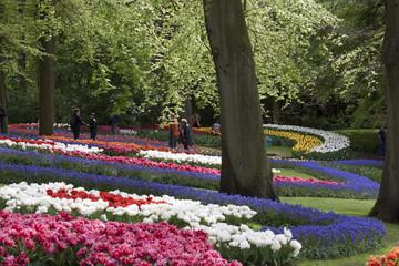 Keukenhof tulip gardens and walking tourists