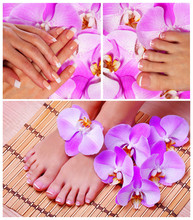 Nail Care Collection. French Manicure and Pedicure