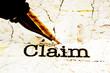 Fountain pen on claim text