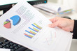 Business graphs analysis