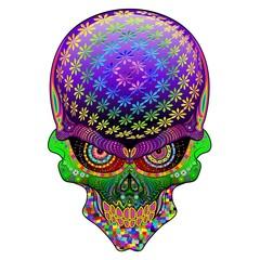 Crazy Skull Psychedelic