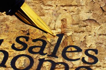 Fountain pen on sales text