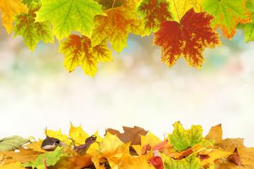 Herbst 58