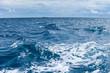 Rest in Paradise - Malediven - Meereswellen - 71290788