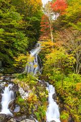 紅葉の白滝1