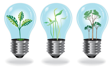 Growing, Plants, Bulb, set