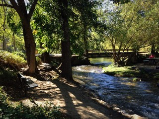 beside the shady creek