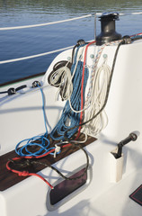 Winch sheet halyard