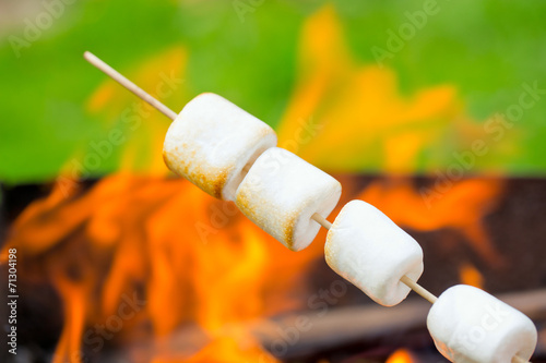 Aluminium Snoepjes Roasted Marshmallows
