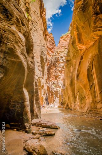 virgin river in zion national park utah - 71305323