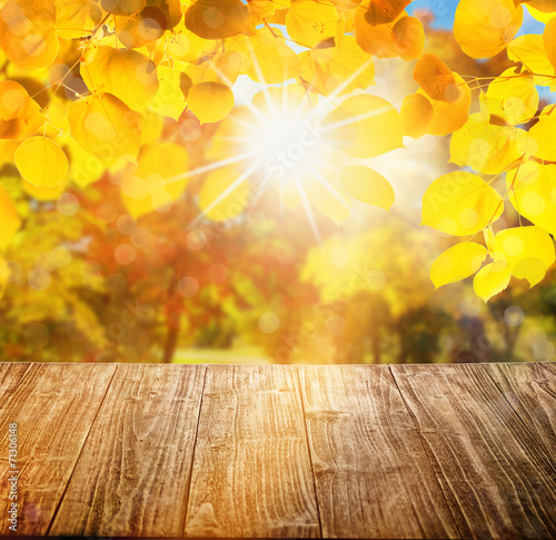 canvas print picture yellow background