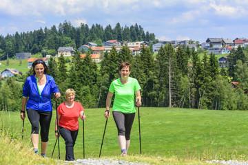 gemeinsam fit durch walken