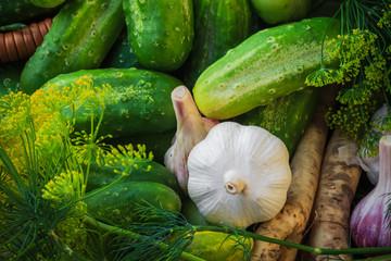 ingredients preparation pickled cucumbers