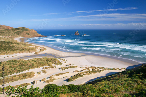 Beautiful Inviting Beach at Sandfly Bay, Otago Peinsula, New Zea Poster