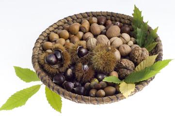 Herbststillleben,  Walnüsse, Haselnüsse, Eicheln und Maroni
