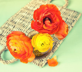 Colorful ranunculus flower on vintage wicker tray