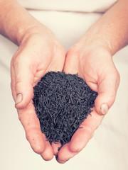 Elderly hands holding organic black tea with retro style