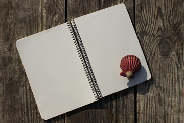 Notebook, shells and old wood