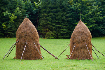 Haystacks in the countryside