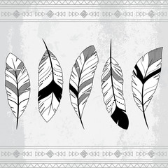 Vector Doodle Stylized Feather Background