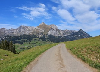 Road and Mt Saentis