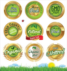 Eco And Bio Labels set