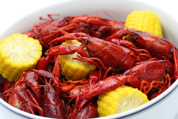 boiled crawfish clayfish party