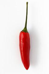 Chili, Chilischote, freigestellt