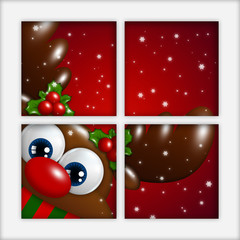 christmas reindeer looking by the window