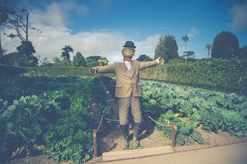 Scarecrow on organic farm in retro style