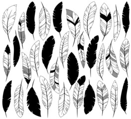 Vector Set of Stylized or Abstract Feathers and Feather Silhouet