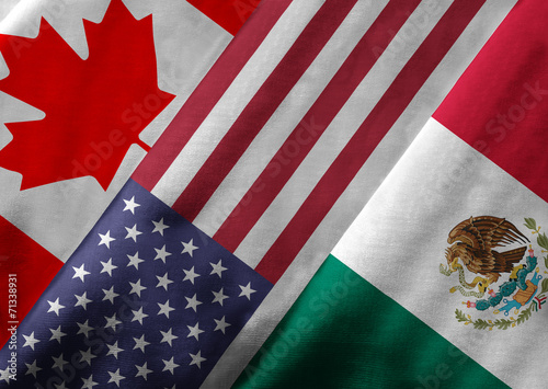 3D Rendering of North American Free Trade Agreement Members - 71338931
