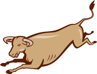 Bull Cow Jumping Cartoon