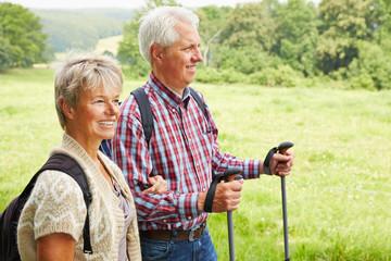 Frau und Mann gehen Wandern im Sommer