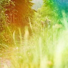 Senioren auf Wanderweg in der Natur