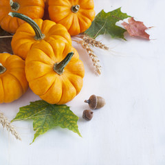 Arrangement from Pumpkin and maaple leaves