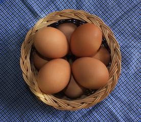 Brown chicken eggs on cloth background