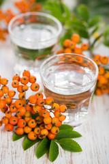 Eberesche (sorbus aucuparia) - Schnaps aus Heilpflanzen