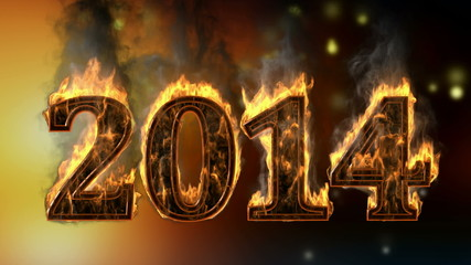 2014 burning year