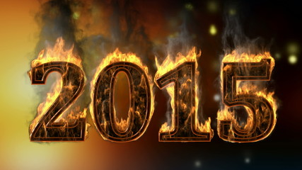 2015 burning year