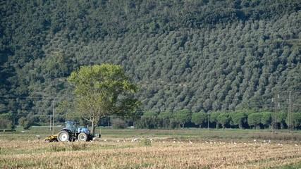 Trattore che dissoda la terra, agricoltura