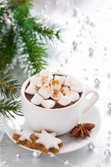 hot chocolate with marshmallow and gingerbread cookies, vertical