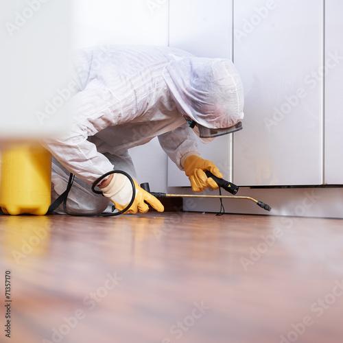 Exterminator at work - 71357170