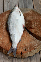 fresh, raw fish whitefish